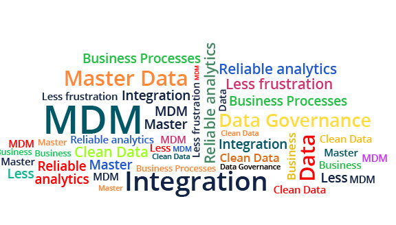 Master Data Management  banner-2 576x328